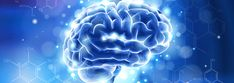 Your Brain Has More Memory Than the Internet | The Institute for Creation Research