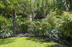 Jungle garden in the Netherlands