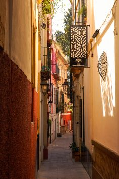 Places of Barrio de Santa Cruz, Seville, Spain