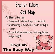 I am very tired. I am going to take a _______. 1. cat nap 2. short nap 3. both http://english-the-easy-way.com/Idioms/Idioms_Page.html #EnglishIdom