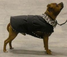 The Snood Factory - Dog Snood, Polar Fleece Patterns