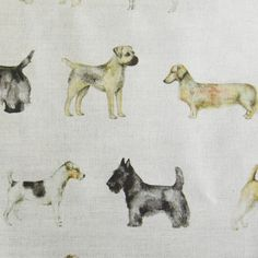 Voyage Maison - Designer Fabrics, Wallpaper & Home Accessories Crafts Beautiful, Dog Pattern, Textile Fabrics, Doggies, Fabric Design, Printing On Fabric, Home Accessories, Art Decor, Nest
