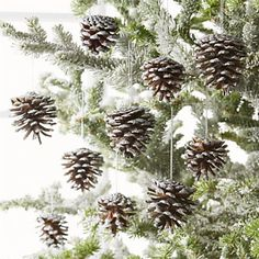 Silver Pinecone Ornaments, Set of 10 at Crate and Barrel White Christmas Ornaments, Christmas Pine Cones, Silver Christmas Decorations, Pinecone Ornaments, Pine Cone Decorations, Woodland Christmas, Gold Christmas, Beautiful Christmas, Christmas Wreaths