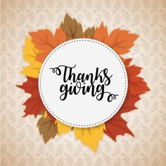 """Thank you consists of just eight letters that form two of the most meaningful words in the English vocabulary."" Doborah Norville #HappyThanksGiving #ThanksGiving #BiOOne"