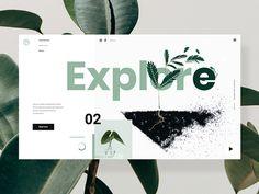 Explore - Minimalist World Plants #4