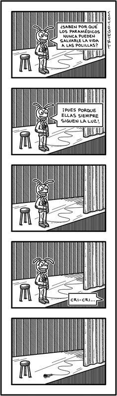 un chiste para insectos