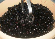 Blackberry, Cookies, Fruit, Crack Crackers, Biscuits, Blackberries, Cookie Recipes, Rich Brunette, Cookie