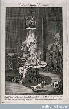 Wellcome Library, LondonA woman seated at a table, and underneath a parrot in a cage suspended from the ceiling, unaware that her wig has been set alight by a mischievous monkey; another woman screams in horror as she enters through a door, in the right foreground a cat shields her kittens from a barking dog.[c.1780]