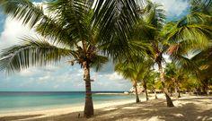 Blaauw Baai, Curaçao (Blue Bay Curaçao)