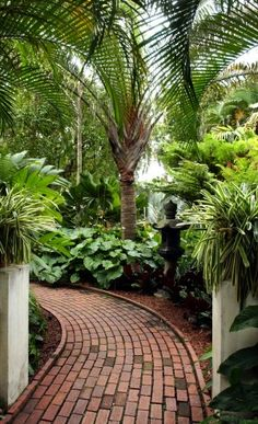 walkway through lush landscape