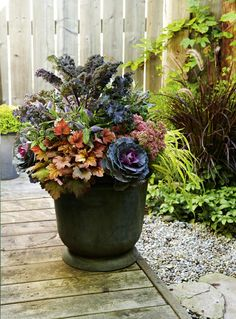 Fall gardening: Ornamental kale and cabbage planter , Fall gardening: Ornamental kale and cabbage planter. Winter Planter, Fall Planters, Outdoor Planters, Outdoor Fun, Outdoor Decor, Fall Flower Pots, Fall Flowers, Ornamental Cabbage, Fall Containers