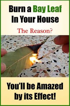 Simply burn a dry bay leaf in an ashtray and leave the room for 10 minutes. When you come back, you will notice a completely different atmosphere, and you will...reatment
