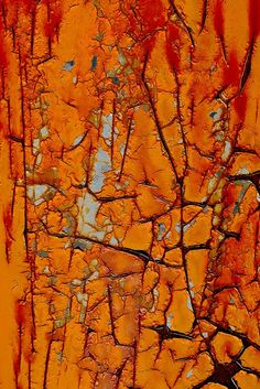 Closeup view of weathered and cracked paint from a wall in a abandoned industrial site building. No photographer listed.