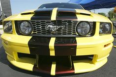 - 2005 - Ford Mustang DCF 500 GT -