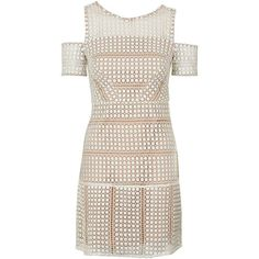 TopShop Circle Lace Cold-Shoulder Dress (1,840 MXN) ❤ liked on Polyvore featuring dresses, form fitting cocktail dresses, cut out shoulder dress, open shoulder dress, form fitted dresses and form fitting dresses