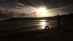 Our last night on the Great Ocean Road was spectacular. Didn't catch a thing but was intensely fun!  #sceneryporn #sunset #cloudporn #ocean #beachsunset #fishing #chickswhofish #dogsofinstagram #reelgirlsfish #hooklineandsinker #seaweed #greatoceanroad #gsdpuppy #bestmate #girlsbestfriend #love #romanticweekend #walksalongthebeach #evening #sand #seashore #victoria #australia #australianbeaches #road #aussie #instagood #photooftheday by skyelee_isme
