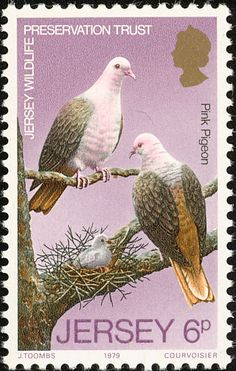 Pink Pigeon stamps - mainly images - gallery format