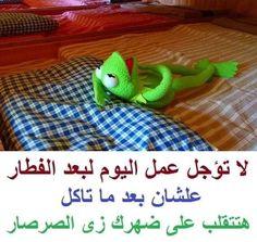 Funny Qoutes, Crazy Funny Memes, Wtf Funny, Hilarious, Arabic Jokes, Arabic Funny, Funny Arabic Quotes, Funny Picture Jokes, Funny Pictures