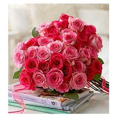 Red and Pink roses Red And Pink Roses, Pink Love, Hot Pink, Beautiful Roses, Beautiful Flowers, Pretty Roses, Pink Rose Bouquet, Online Florist, No Rain