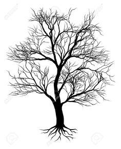 10483266-A-hand-drawn-old-tree-silhouette-illustration-Stock-Vector-oak.jpg (1050×1300)
