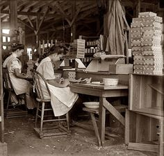 """""""Girls working in Tampa, Florida, cigar box factory. I saw 10 small boys and girls. Has had reputation for employment of youngsters but work is slack now. January 28, 1909."""" Photographer Lewis Wickes Hine 1874-1940"""