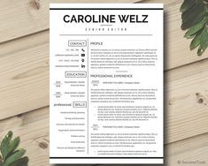 Microsoft Word Professional Letter Template Resume Template  Cv Template  Cover Letter For Ms Word .
