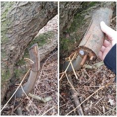 A nice fake stick geocache, with a plastic nano tucked in holding the log. Just remember you can't damage a tree that isn't yours to make a hide. (pic by UK_Geocacher) #IBGCp