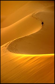Sahara - I would love to ride a camel in the Sahara! Also to roll down from  a dune! :)