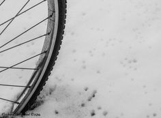 Snow Cycle: McMasterville, Québec,   Photo by Richard Guimond ©2016 20161207 11:08:14 0115 (3)f  Canon EOS 40D 50mm f1.8 at 1/320 f4
