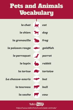 Pets and Animals Vocabulary How do you call pets and animals in French? Learn the different French words for animals and pets here in this article. Useful French Phrases, Basic French Words, How To Speak French, Learn French Free, Learn French Beginner, Free In French, French Basics, French For Beginners, French Flashcards
