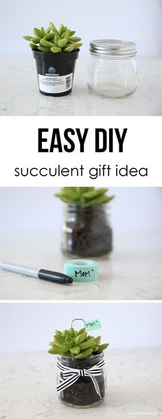 Easy DIY succulent gift idea. Save yourself the money and make this sweet heartfelt gift right in your back yard!!