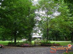 Stanley's Olde Maple Lane Farm is the national capital region's premier location for Weddings, Corporate retreats, and Family fun. Come see us today. Sugar Bush, The Pancake House, Floor To Ceiling Windows, Acre, Greenery, Photo Galleries, Sidewalk, Spring Weddings, Ottawa