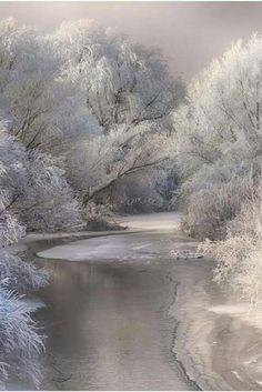 glawarhal: Winter song by Sebestyen Bela, gray, snow, landscape Winter Szenen, Winter Magic, Winter Trees, Winter White, Snowy Trees, All Nature, Amazing Nature, Landscape Photography, Nature Photography