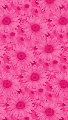 Wallpapers for iPhone and Android. Click the link below for Tech News n Gadget Updates. Pink Wallpaper Design, Floral Wallpaper Iphone, Pink Wallpaper Backgrounds, Flowery Wallpaper, Sunflower Wallpaper, Flower Backgrounds, Cellphone Wallpaper, Beautiful Flowers Wallpapers, Pretty Wallpapers