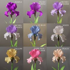 These single stem crepe paper bearded irises are highly detailed and realistic…