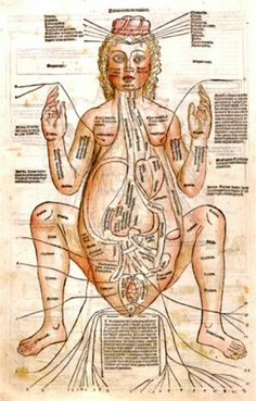 Figure of a pregnant woman, a woodcut with hand color, is from Fasciculus…