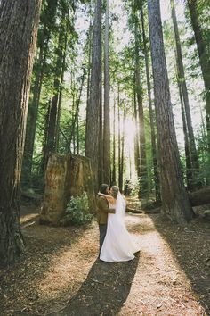 Redwoods Wedding Kevinandbri Set Designers Donm Alyssameredith Dougmahergolfs Venue Camp Navarroredwood
