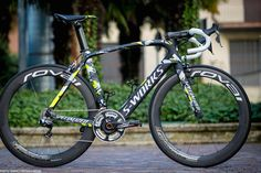 Peter Sagan's Venge 2015