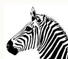 Illustration about An illustration of a Zebra s head. Illustration of drawing, frame, abstract - 996599 Zebra Illustration, Tropical Animals, Baby Zebra, Christmas Illustration, Jungle Animals, Watercolor Animals, Zebras, Animal Drawings, Decoration