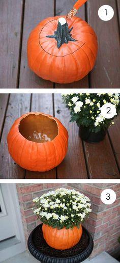 halloween deko idee kürbis vase mit weißen chrysanthemen