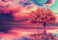 Drzewo, Woda, Huśtawka, Niebo, Chmury