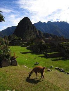 Machu Picchu, Peru. by claudine