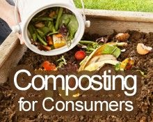 Some Common Household Waste Items to Compost — Medium