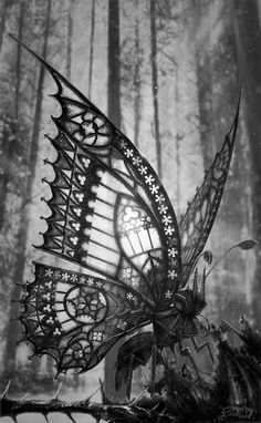 The Gothic Butterfly by David Aguirre Hoffmann. °