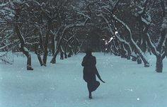 Зимняя ночь в саду. Ниткой тонкой - и месяц в небе, И цикады чуть слышный звон.