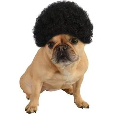 3e085778fe Rubie s Pet Costume Afro Curly Wig