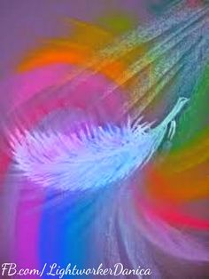 Your angels send you signs of their presence such as feathers, sparkling lights, and meaningful songs.  Facebook.com/LightworkerDanica