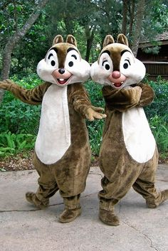 Chip and Dale ~  Animal Kingdom