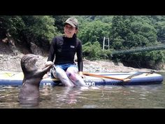 (3) Camping with Instagrammer, Yoshimi Lynn and Omichan at Noro Lodge[Otter life Day 289]【カワウソアティとにゃん先輩】 - YouTube Lynn, Yoshimi, A Day In Life, With, Otters, Bingo, Camping, Outdoor Decor, Youtube