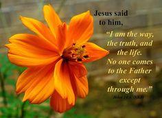 inspirational bible verses | John 14:6 Bible Verse | Faith Bible Verse Wallpapers | Free Christian ...